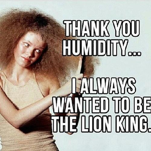 Natural Hair Humidity Meme Zen Bitch